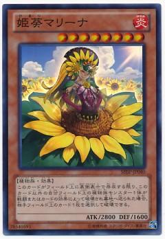 card100014019_1