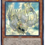 card100017654_1