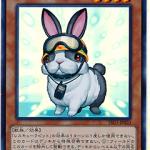 card100020798_1