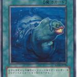 card1003637_1