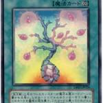 card1002117_1