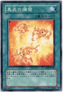 card1003435_1