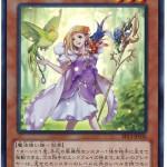card100013021_1