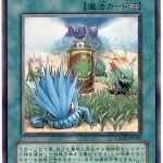 card1002732_1