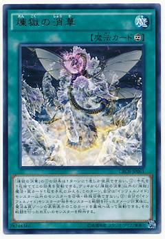 card100021551_1
