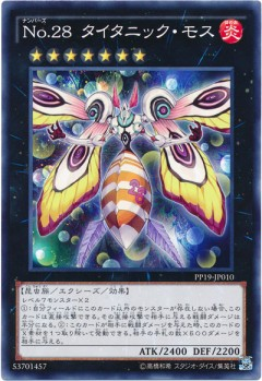 card100044553_1