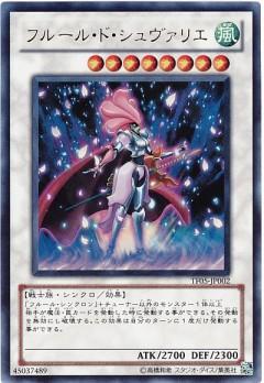 card100019837_1