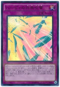 card100044346_1