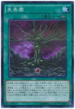 card100044358_1